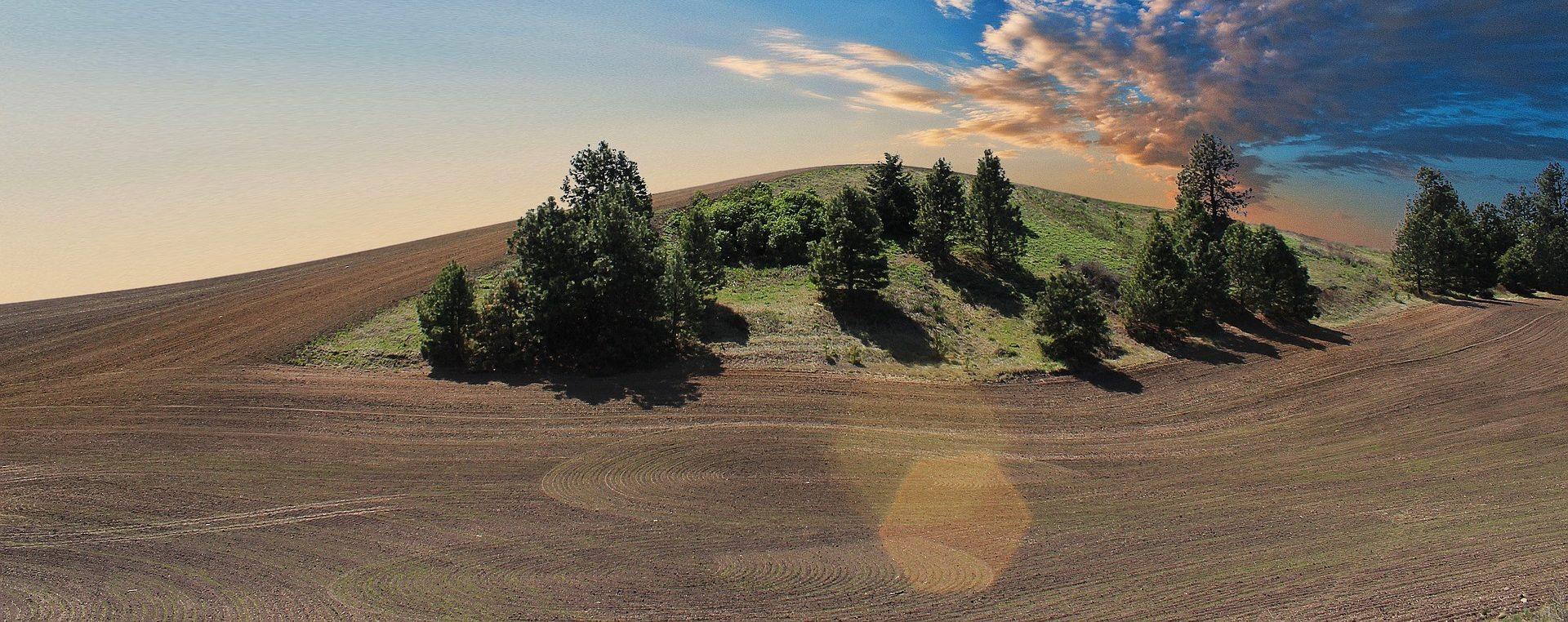 fresare il terreno